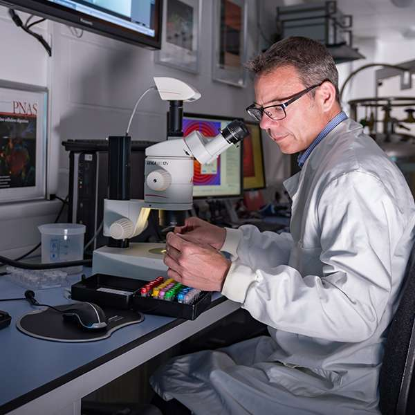 Professor John McGeehan in his laboratory