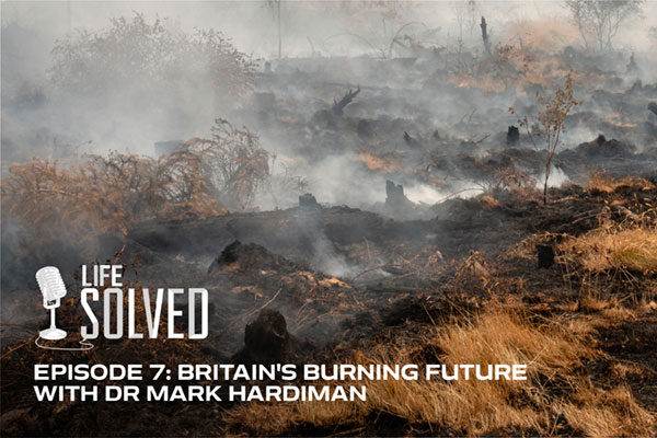 Smoke rising from the ground after a wildfire devastated a forest. Life Solved logo and title.